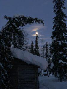 Kuuna paistoi kuusen oksat..
